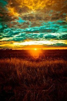 Amazing shot!!! God's creations are so beautiful