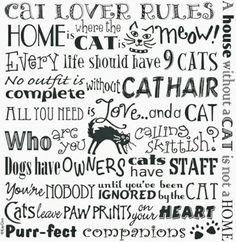 Cats ♥♥♥♥♥