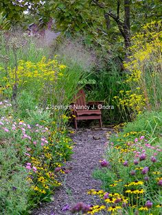 Garden path through a planting of flowering perennials and ornamental grasses in fall (autumn), with a garden bench seat (Adirondack chair)
