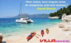 A január 10-én elhunyt világhírű énekes David Bowie emléke előtt tisztelegjünk egyik idézetével #david#bowie#idézetek