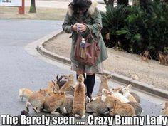 Crazy bunny lady - http://jokideo.com/crazy-bunny-lady/