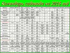 Список отмечаемых праздников в году