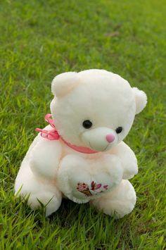 New clothes ideas teddy bears ideas Teddy Bear Images, Teddy Bear Pictures, Practical Gifts For Men, Teddy Beer, Girly Dp, Teddy Bear Baby Shower, Cute Cartoon Characters, Bear Wallpaper, Cute Teddy Bears