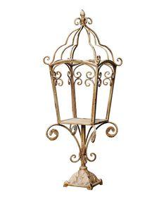 Established 98 Gilded Scroll Lantern   zulily
