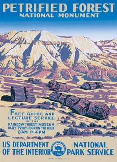 Petrified Forest, vintage National Park poster