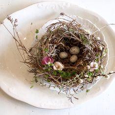 Foraging Happiness ~ DIY Bird Nest ~ LeCultivateurA bird's nest by Jan Voerman jr. Bird Nest Craft, Bird Nests, Favorite Things Party, Spring Birds, Diy Décoration, Small Birds, Spring Crafts, Spring Projects, Faux Flowers