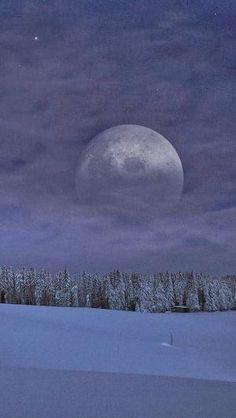 Moon - Black Forest, Germany