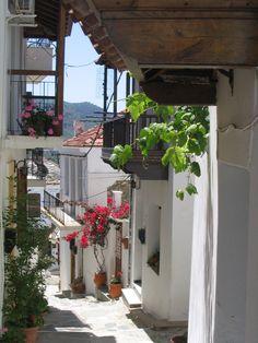 Skopelos street, Greece