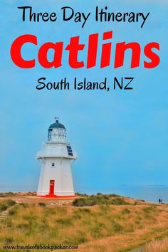 Three Day Catlins Itinerary: Top things to do in the Catlins A guide to all the best things to do in the Catlins, New Zealand so you can plan the perfect Catlins itinerary for your road trip on the South Island. Top Travel Destinations, Amazing Destinations, Travel Tips, Travel Advice, Moving To New Zealand, New Zealand Travel, Stuff To Do, Things To Do, New Zealand Adventure