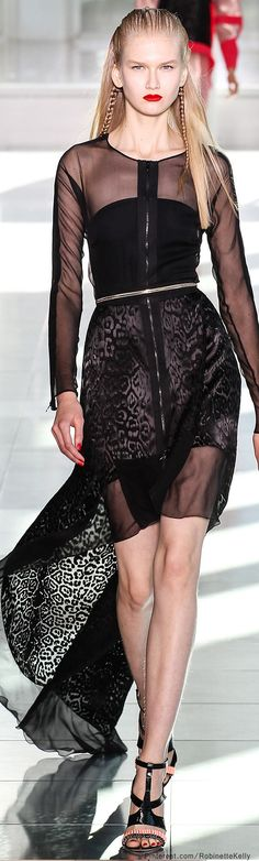 Antonio Berardi | S/S 2014 She must look absolutely miserable because she's on the runway and never shaved her legs.
