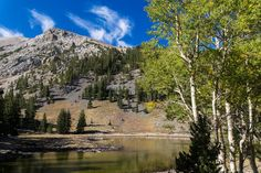 Great Basin National Park by QT Luong