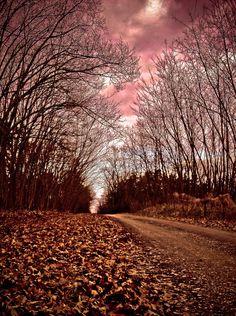Secret passage by Warquis on DeviantArt Secret Passage, Adobe Photoshop Lightroom, Focal Length, Aperture, Shutter Speed, Country Roads, Deviantart, Openness, Septum