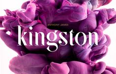 It's a sure fact that if you start browsing on Behance you will come across amazing designers and their work. That's what I was doing when I found this amazing font called SF Kingston Pro. It…
