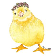 Easter drawing: animal drawing of a little chick (baby chicken) with a flower crown. Perfect for the spring and easter time. Drawn with Faber Castell pencils.