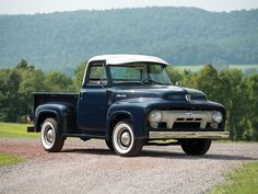 1954 Ford F100 Pickup Maintenance/restoration of old/vintage vehicles: the material for new cogs/casters/gears/pads could be cast polyamide which I (Cast polyamide) can produce. My contact: tatjana.alic@windowslive.com