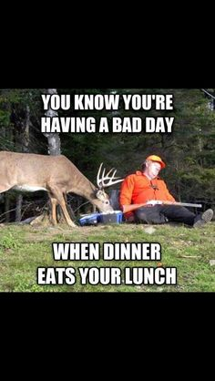 We have combined a list of hunting pictures and photos of deer that will surely make you laugh. Funny hunting photos to share. Browse funny deer pics now > Funny Shit, Funny Cute, The Funny, Funny Jokes, Funny Stuff, Hilarious Sayings, That's Hilarious, Funny Captions, Funny Things