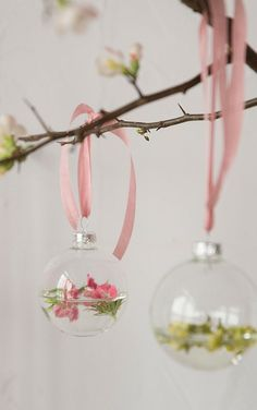 ornaments filled with floating flowers then tied to fresh cut branches with pretty ribbon ... a lovely way to welcome spring and decorate for easter, too