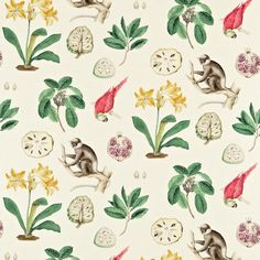 Sanderson Capuchins Fabric DVOY223272 Designer Fabrics and Wallpapers by Sanderson, Harlequin, Morris, Osborne, Little And many more