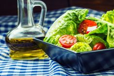 Fresh lettuce salad with cherry tomatoes  radish and carafe. stock photo