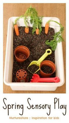 Spring sensory play tub with carrots - NurtureStore Spring sensory play activities for kids - fun for Easter too!<br> Such a fun spring sensory play tub, with extra ideas for spring activities for kids. Spring Activities, Infant Activities, Preschool Activities, Easter Activities For Toddlers, Seasons Activities, Nursery Activities, Spring Craft For Toddlers, Spring Preschool Theme, Outdoor Activities For Preschoolers