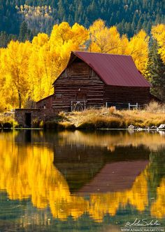 Colorado Barn - The reflection of autumn trees in the water during.  Beautiful!