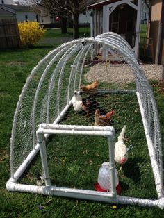 Portable chicken tractor - Elfinworld - image-2165.jpg