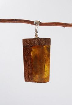Amber And Wood Pendant, Natural Gold Baltic Amber Pendant, Brown Wood Pendant, Gold Amber Stone, Amber Jewelry, Wood Jewelry, Amber Wood