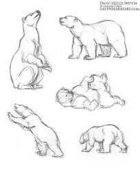 Image result for badass polar bear drawing