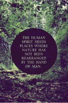 "The Human Spirit | EachWayUp | Art, Music, Life - ""The Human Spirit Needs Places Where Nature Has Not Been Rearranged By The Hand Of Man"" - via sun-gazing.com"