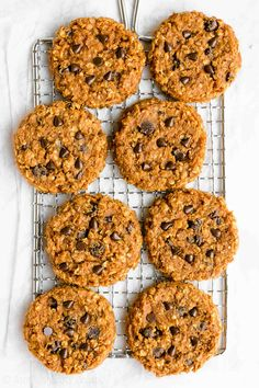 Healthy Flourless Pumpkin Chocolate Chip Oatmeal Protein Cookies - soft, chewy & only 101 calories! My FAVORITE pumpkin cookies! Oatmeal Protein Cookies, Pumpkin Chocolate Chip Cookies, Chocolate Chip Oatmeal, Healthy Cookies, Protein Snacks, Healthy Desserts, Baked Pumpkin, Pumpkin Recipes, Healthy Baking