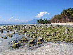 Une plage à marée basse, sur l'île de Pantar, dans les petites îles de la Sonde, sur l'archipel d'Alor, en Indonésie