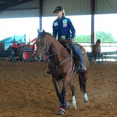 Stevi Hillman showing us some drills and exercises she does with her horses on and off the pattern. Training videos coming soon at trainingbarrelhorses.com! #stevihillman #trainingbarrelhorses #barrel racing