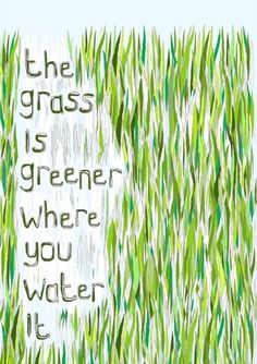 What a great saying and it is so true in life and business. Instead of looking at what you don't have and being jealous, why don't you be thankful for what seeds you do have and then plant them, water them and watch your grass grow.