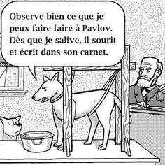 Le Pavlov du réflexe