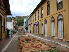 Rugs made of flowers