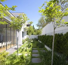 House in Ramat Hasharon - Levy:Chamizer Architects