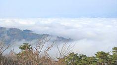 雲海が見える 岩山展望台