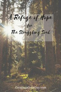 When we abide in Christ, we have a refuge for our souls. In Jesus, we have a refuge and a rescuer to give us hope when we struggle.