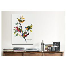 "iCanvas ""Painted Bunting"" by John James Audubon Painting Print on Canvas & Reviews | Wayfair"