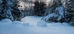 Winter in Sauble Beach near the Sauble Falls Provincial Park. Fine Art Photography, Landscape Photography, Canvas Online, Beach Photos, Canvas Prints, Canada, Park, Winter, Outdoor