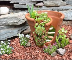 Here is a miniature flower pot garden, inspired by a broken terracotta planter. You can pretend that you're being environmentally conscious by recycling (or is it re-using?) something that was ...