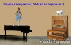 Eb Piano, Music Instruments, Lol, Humor, Musical Instruments, Laughing So Hard, Humour, Pianos, Jokes