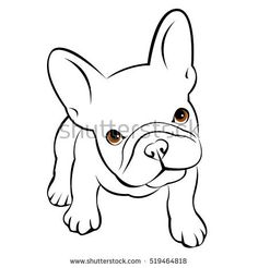 Draw a puppy face puppy drawings bulldog dog animal french vector illustration pet breed cute drawing French Bulldog Drawing, French Bulldog Tattoo, French Bulldog Puppies, French Bulldogs, Bulldog Breeds, Pet Breeds, Cute Animal Drawings, Cute Drawings, Puppy Drawings