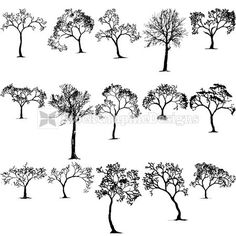Winter Tree Silhouettes Vector Collection | StockGraphicDesigns