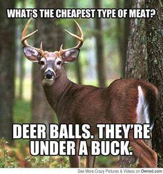 http://11043.bridgepages.net/deerhunting Get Free Deer Hunting Tricks Funny Deer Hunting Meme