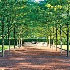 Dan Kiley's grounds at Miller House and Garden / Columbus, Indiana