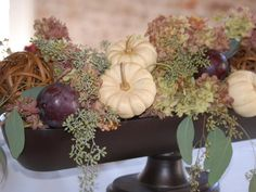 A long, footed urn elevates this low, rustic centerpiece with hydrangea, seeded eucalyptus and repeated round shapes in the mini pumpkins, plums and twig balls.