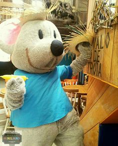 #Ratinho #Botão em clima de festa #Junina aqui no #MuseuMinilandBuffet   o#buffetMuseuMiniland