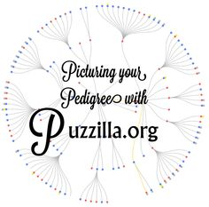 Today I want to share one of my favorite apps from the FamilySearch app gallery – Puzzilla! Puzzilla.org reads the data on your family tree and creates a compact, bird's eye view of you…