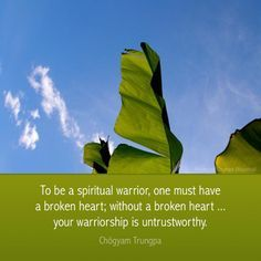 Chogyam Trungpa ~ To be a spiritual warrior, one must have a broken heart; without a broken heart... your warriorship is untrustworthy - Splitting up can be tough to take... but a new love will enter your future soon if you ... http://www.psychicinstantmessaging.co.uk/pimpin4